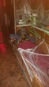 Zombie Anne