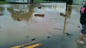 Flood Debris in the Street