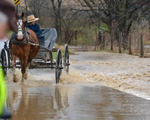 Amish Carriage with Driver after a rain storm